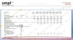 Финансово-экономическая модель инвестиционного проекта (ФЭМ), стр 2 - Пример. Образец. Производственный проект   SMPL (min)