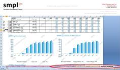 Финансово-экономическая модель инвестиционного проекта (ФЭМ), стр 1 - Пример. Образец. Производственный проект   SMPL (min)