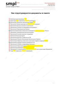 Структура пакета документов для защиты проекта перед инвестором - Пример. Образец. Производственный проект   SMPL (min)